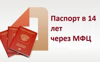 Как получить паспорт в 14 лет через МФЦ